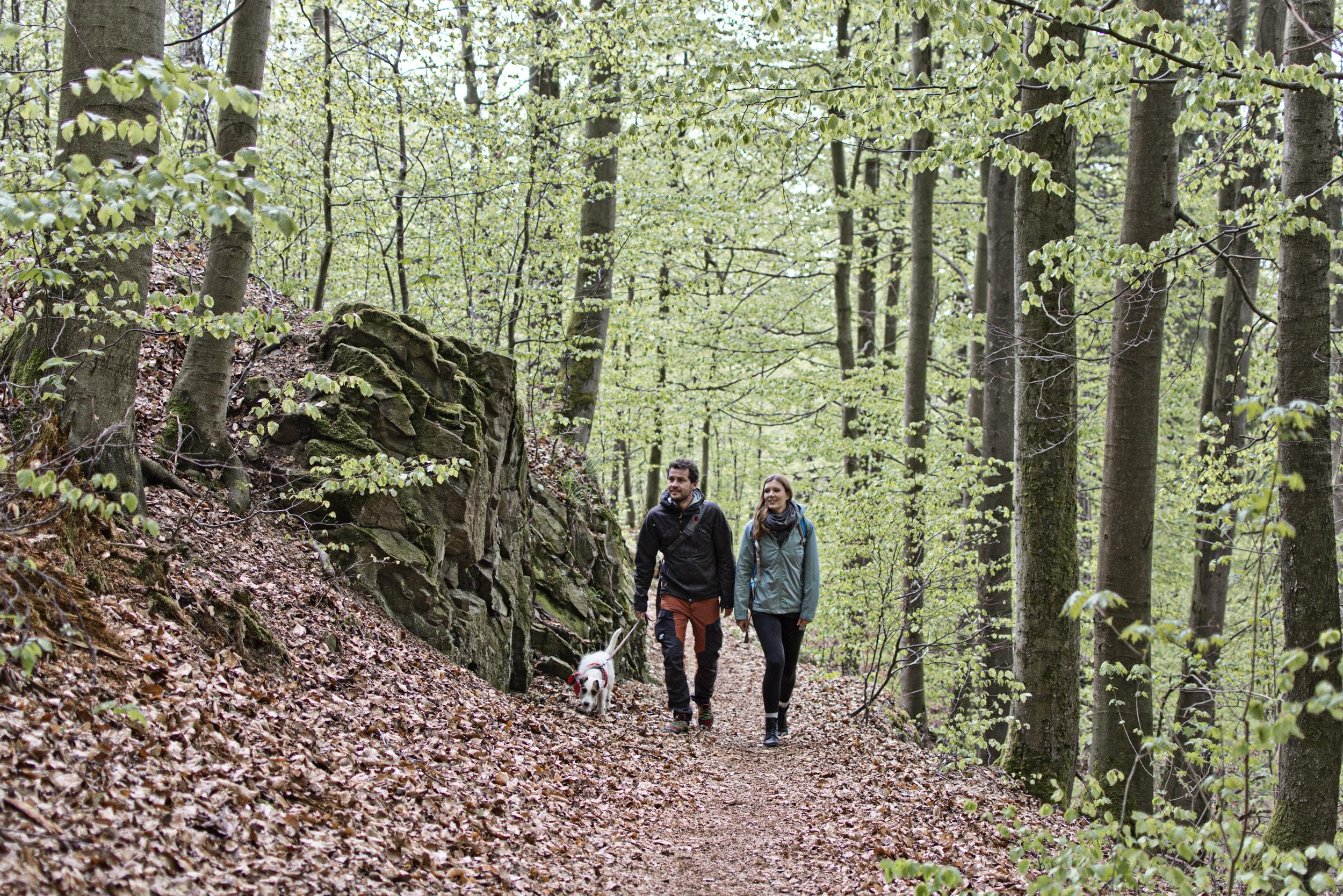 Wandern im Südharz, Christian Schelauske
