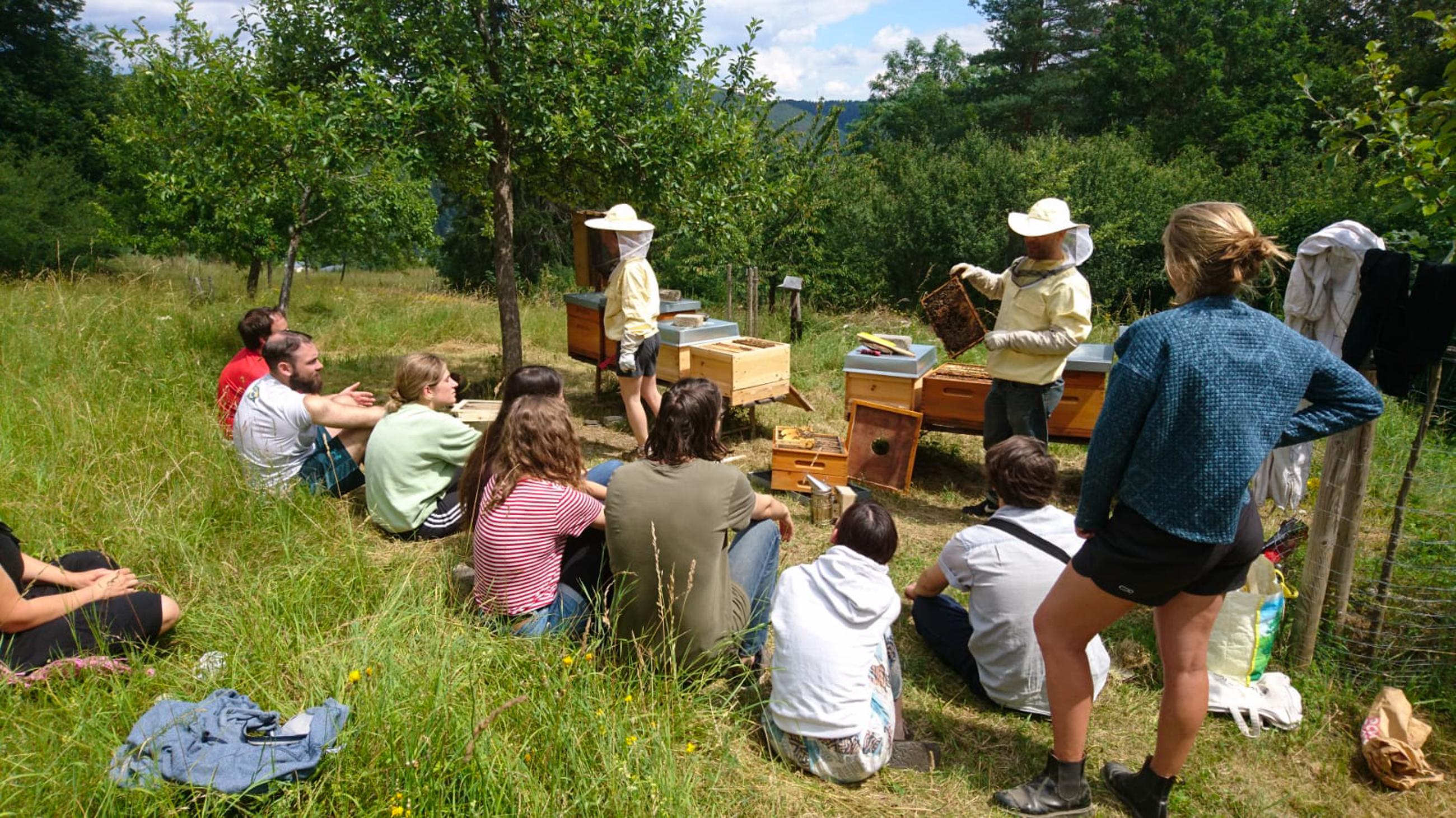 Bienenworkshop am Naturlehrpfad (Quelle: RAG Saalfeld-Rudolstadt)